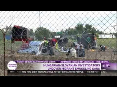 Hungarian and Slovakian Investigators Smash Migrant Smuggling Networks