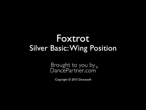 Foxtrot-1-09: Silver Basic Wing Position