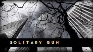 Rogue Wave - Solitary Gun