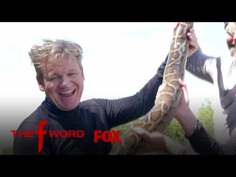 Gordon And Jack Ramsay Hunt For A Burmese Python | Season 1 Ep. 8 | THE F WORD
