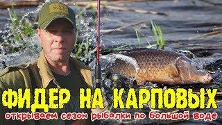 Рыбалка, открытие сезона на карповых/Fishing, opening the season on carp #ru_kompass #fishing #рыбал