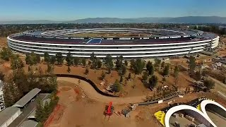 Apple Works to Stop Glass-Wall Injuries at New Campus
