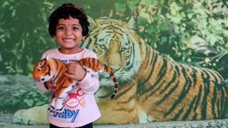 Tiger Toy Talk Show for Kids School Speech Activities