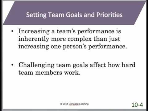 Chapter 10   Managing Teams   MAN 3025 Online