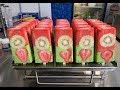 Paletas de Fresa Con Kiwi para Negocio