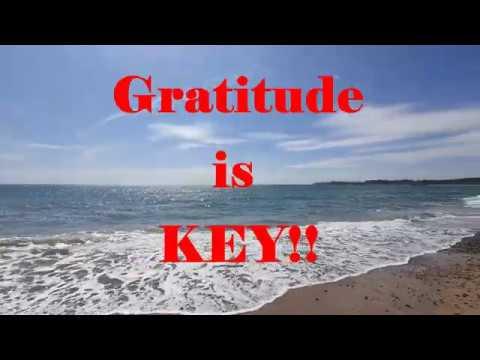 Gratitude Walk