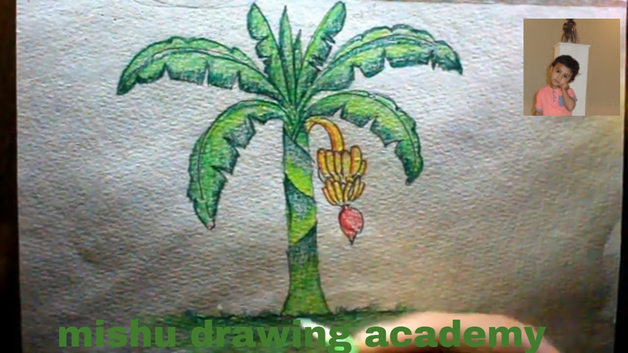 How to draw banana tree with color pencil