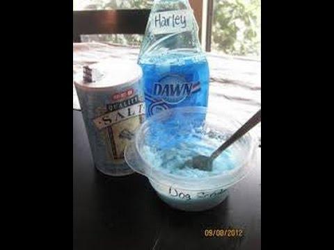 Homemade Flea shampoo. - YouTube