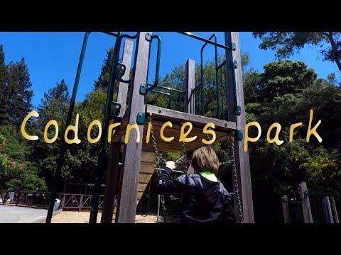 Best Family Parks Berkeley - Codornices Park Video