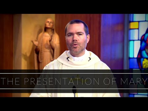 The Presentation of Mary | Homily: Father Timothy Hynes