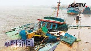 [中国新闻] 印度西部30万人紧急疏散躲避热带气旋 | CCTV中文国际