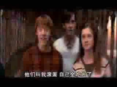 Harry Potter&Ginny Weasley - Will I(Lose My Dignity)