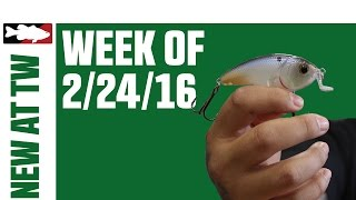 What's New At Tackle Warehouse w. Matt Solorio  - 2/24/16