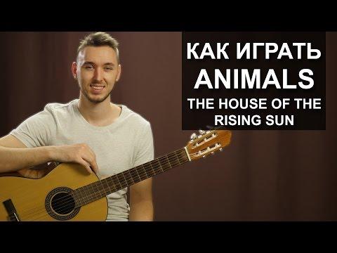 Как играть: The Animals - House of the rising sun на гитаре | Разбор, видео урок