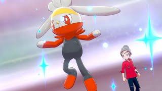 Pokémon Sword & Shield Walkthrough Part 2 - Journey To The Gym