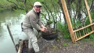 Видео о настоящей камчатской рыбалке на микижу ( дикая форель )
