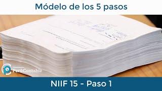 Modelo de los 5 pasos NIIF 15 - Paso 1 Identificar el Contrato