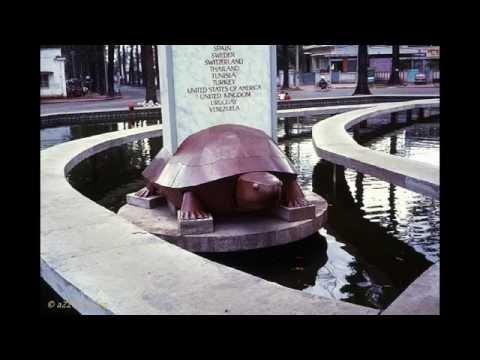 Hồ con rùa [SGTT - POKEMON]