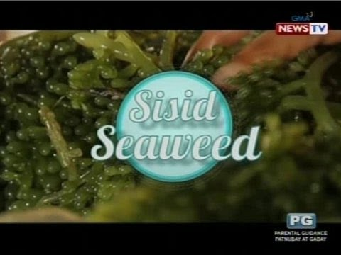 Good News: Seaweed Sarap