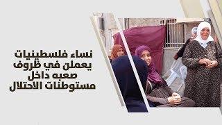 نساء فلسطينيات يعملن في ظروف صعبه داخل مستوطنات الاحتلال