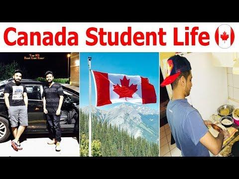 Canada Student Life || Study || Work || Struggle || Visa || Punjabi || Lifestyle || Indians
