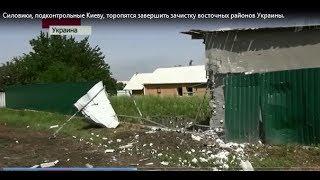 видео клиника на ул. Лесная