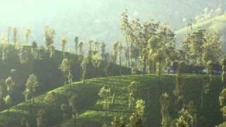 Download lagu Hindi audio Bible Luke