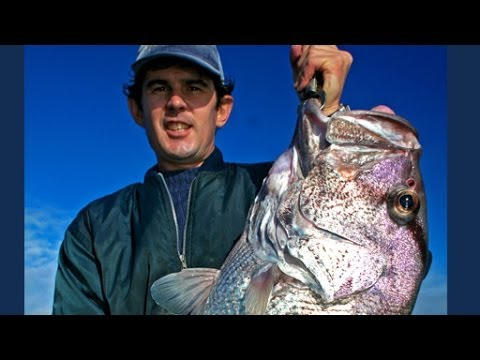 Local Fishing Legends - Jurien Dhufish with Noles