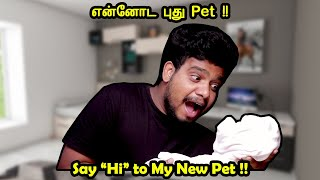 "என்னோட புது PET !!!!!!!! | Say ""Hi"" to My New Pet!! 