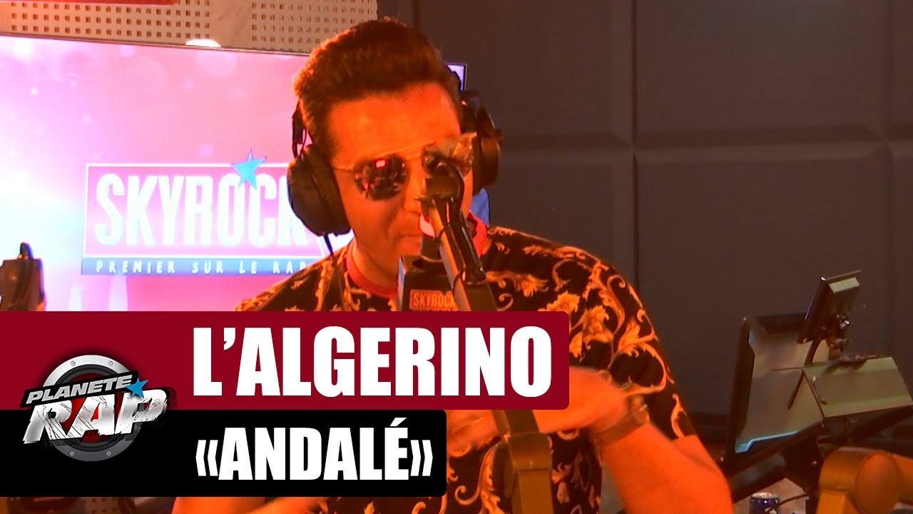 music algerino andale