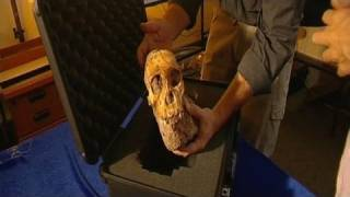 جنوب افريقيا: إكتشاف بقايا كائنات تشبه الجنس البشري
