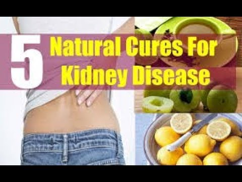 How To Prevent Kidney Disease    Top 5 Natural Cures For Kidney Disease