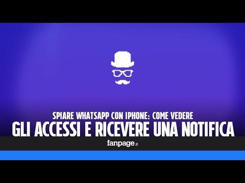 programma per monitorare accessi whatsapp