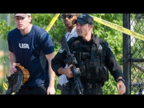 NRA spokesperson Dana Loesch on Alexandria shooting