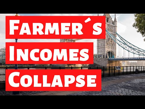 Brexit consequences: incomes of British farmers collapse dramatically - Brexit explained