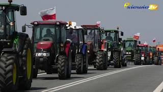 KAPUSTA POD STAROSTWEM W SIERADZU! PROTEST ROLNIKÓW TRWA - siewie.tv