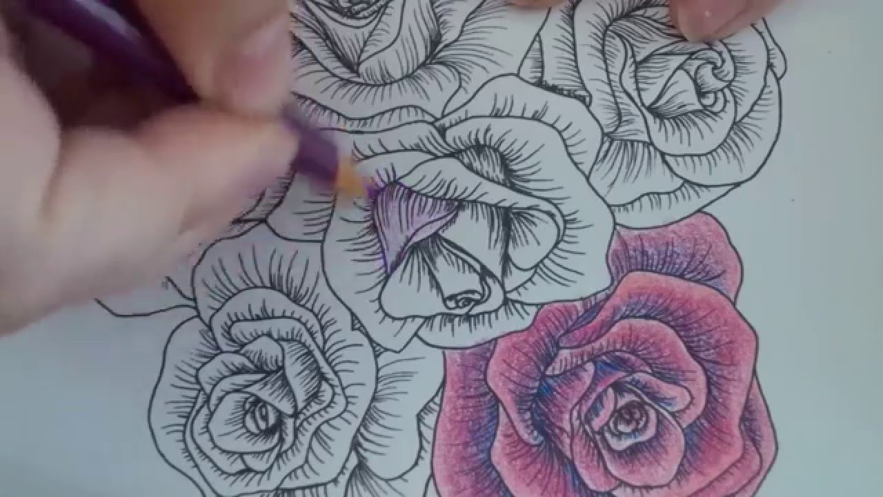 rose number 2 shading and coloring - YouTube