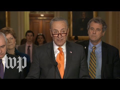 Schumer: 'I was encouraged' by Trump's comments on DACA