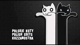 Polskie Koty Polish Edits Kozzanostra