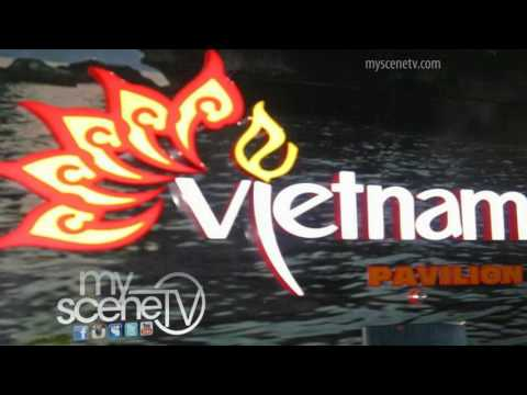 MSTv Korea: hits the South Korean Yeosu Fair & Expo
