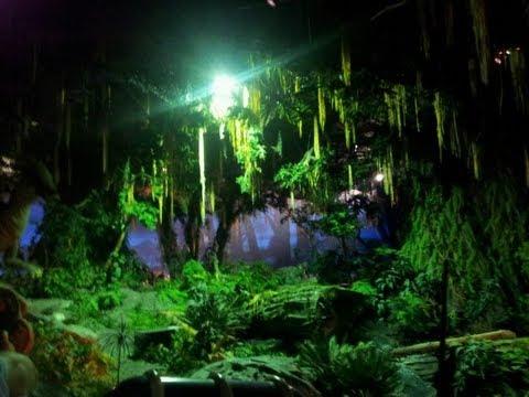 Stuck on dinosaur at disneys animal kingdom lights on youtube