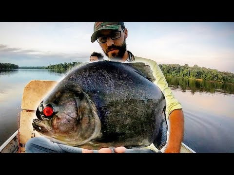 MONSTER PIRANHA FISHING In The AMAZON!!