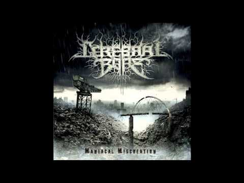 Cerebral Bore - Entombed In Butchered Bodies