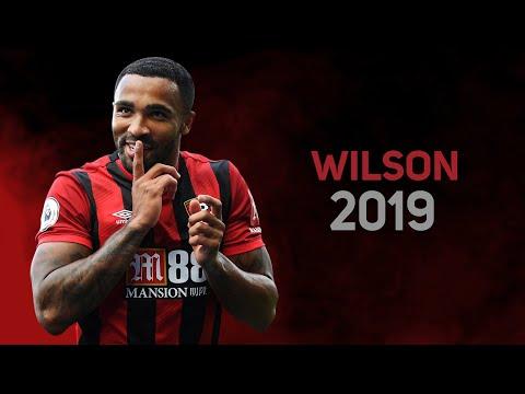 Callum Wilson 2019 - skills & goals | top Bournemouth stricker  | HD