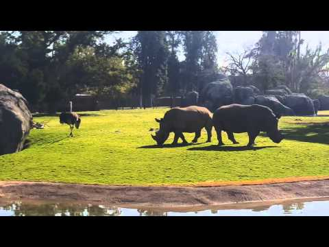 New Fresno Chaffee Zoo's African Adventure 2015