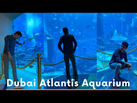 The Lost Chambers Aquarium Dubai | Atlantis The Palm | Dubai Vlog (2021)