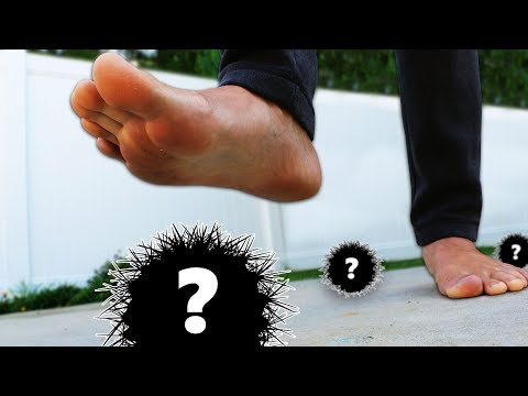 DONT Step on it Challenge!! (HIDDEN PAINFUL MYSTERY ITEMS)