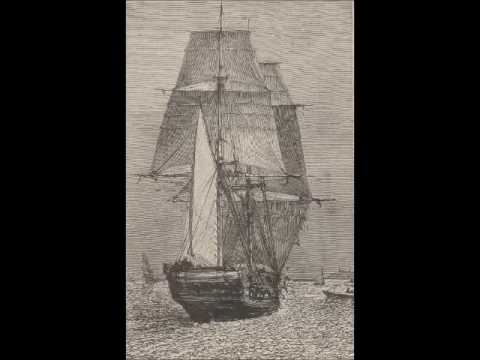 Charles Darwin's Beagle Diary, John Van Wyhe