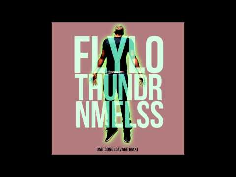 Flying Lotus + Thundercat + NAMELESS = DMT Song [SavageRMX]