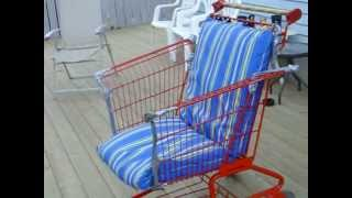 Shopping Cart Lawn Chair